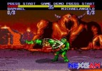 Turtles-Tournament-Fighters-6.jpg
