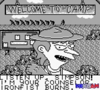 Bart-Simpson-Escape-from-Camp-Deadly-1.jpg